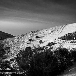 Mlaver Hills 26 Dec 10bw 029