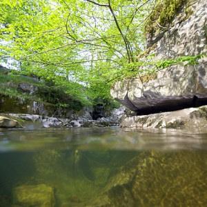 River Mellte