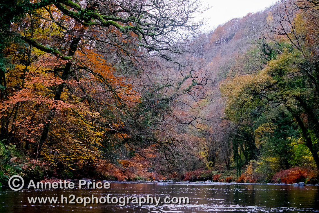 River Dart, UK