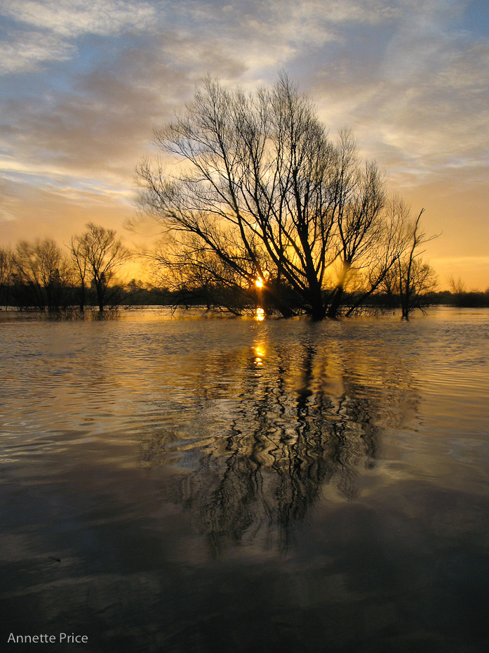 Worcester floods Jan 2013-46