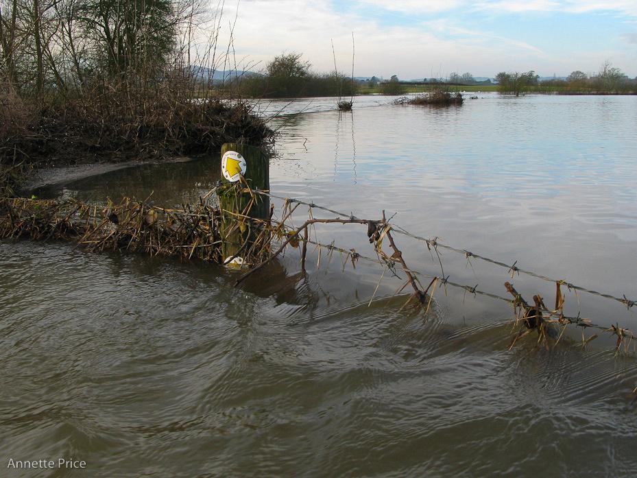Worcester floods Jan 2013-184