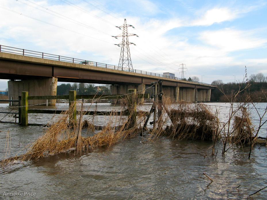 Worcester floods Jan 2013-91