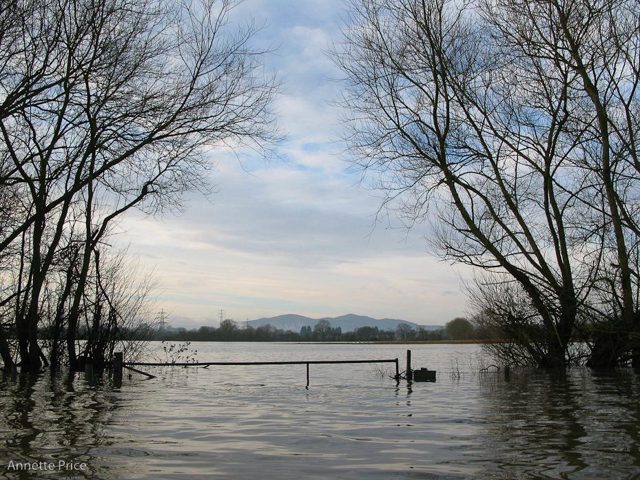 Worcester floods Jan 2013-100