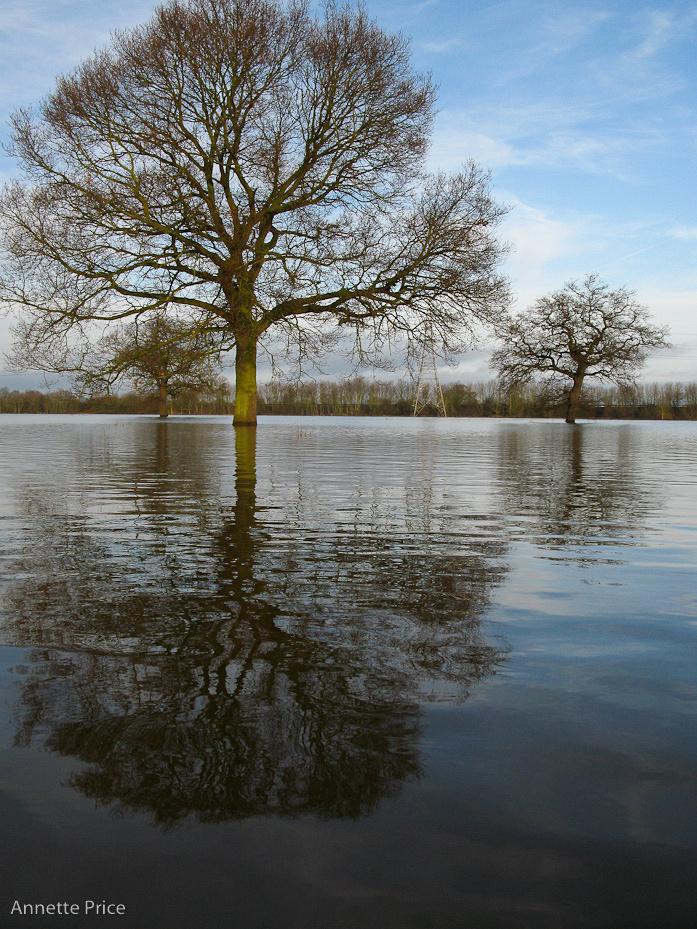 Worcester floods Jan 2013-158