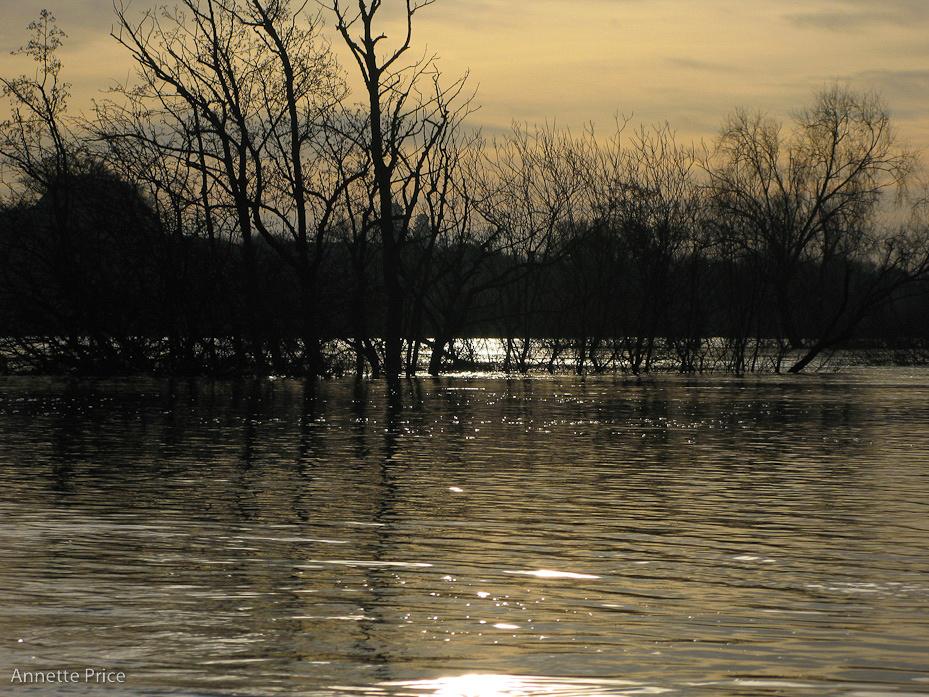 Worcester floods Jan 2013-198