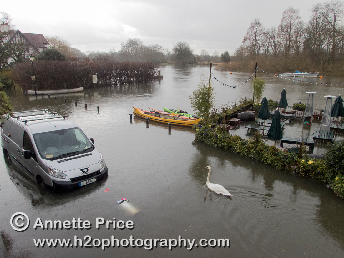 High water on the River Thames. White Swan Pub - Twickenham, London.