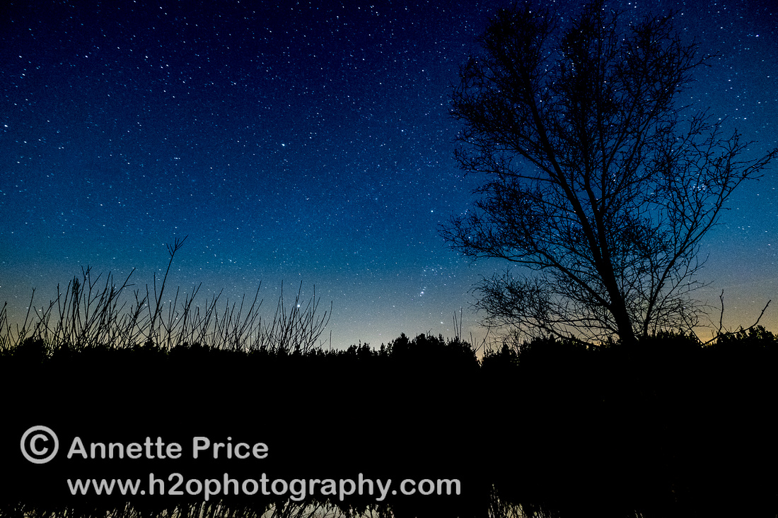 Stars over Bramshill Lake, near Reading, UK