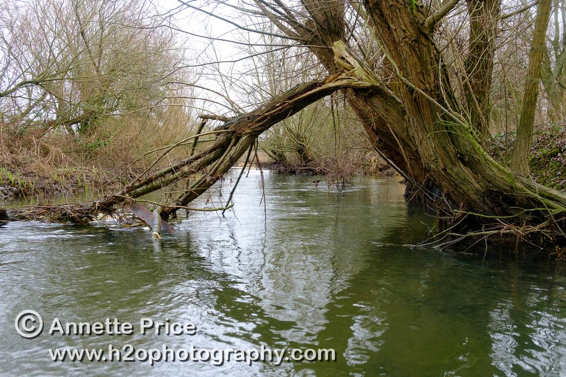 Cricklade - River Thames