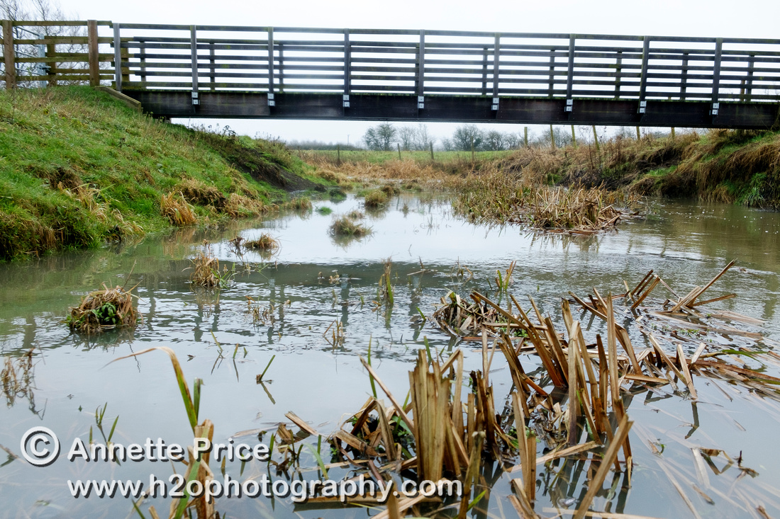 Bridge across a tributary . River Thames, up-river from Lechlade, UK.