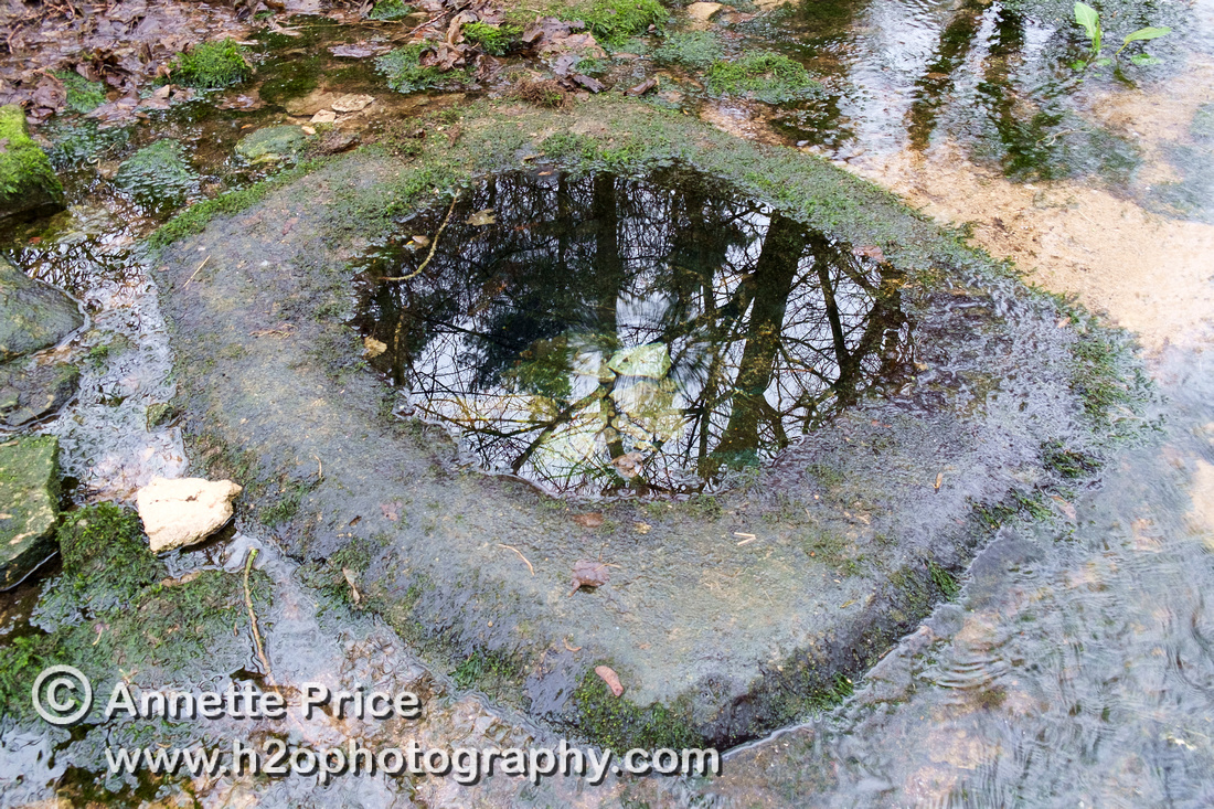 Lyd Well, near Kemble. River Thames.