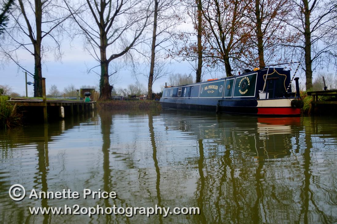 Lechlade Marina. River Thames, UK.